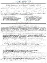 Breakupus Glamorous Resume Sample Senior Sales Executive Resume Careerresumes With Divine Resume Sample Senior Sales Executive Page And Gorgeous Career