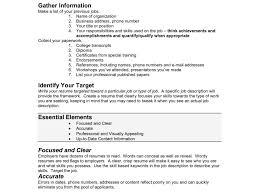 Ideas To Put On A Resume Plush Design Ideas What Do You Put On A Resume 8 What To Put On