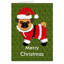 adorable pug cards to fall in with the cool card