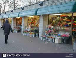 local flower shops local flower shops stock photo royalty free image 5990537 alamy