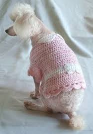 free dog crochet costume patterns puppy clothes and more