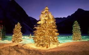christmas tree art id 42471 art abyss