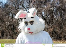 big easter bunny easter bunny stock photo image 56999961