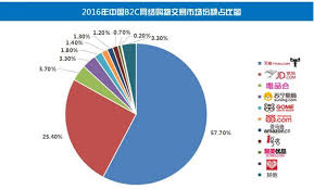 alibaba target market a detailed look at jd com s strategy market position and growth