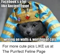 Egyptian Memes - 25 best memes about ancient egypt ancient egypt memes