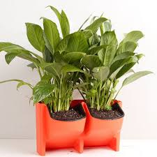 Self Watering Self Watering 2 Pocket Stackable Vertical Garden Wall Hanging