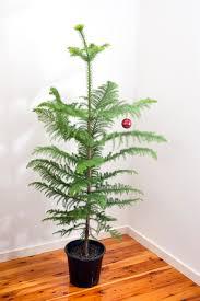christmas bauble tree christmas lights decoration