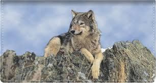 wolves checks 4checks