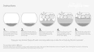 how to assemble a juicykits com terrarium kit juicykits com