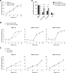mutations in encephalomyocarditis virus 3a protein uncouple the