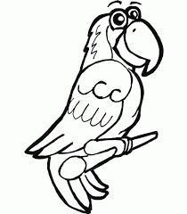5 impressive parrot coloring pages ngbasic
