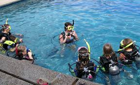 Texas snorkeling images Happenings summer camps bobcat blog jpg