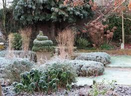 the best plants for amazingly low maintenance garden pots the