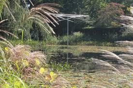 Sunken Gardens Family Membership Longhouse Reserve