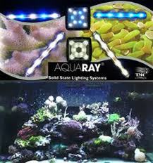 led reef lighting reviews aquarium lighting newer technology t2 light review more