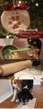 best 25 dog christmas gifts ideas on pinterest dog crafts diy