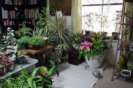 indoors garden best indoor garden home design ideas and pictures