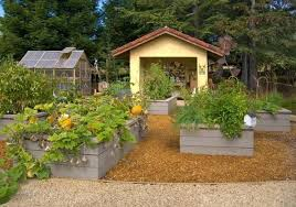 raised bed design ideas best of 20 raised bed garden designs and