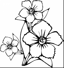 coloring pictures of hibiscus flowers extremely ideas flowers coloring pages hibiscus flower coloring pages