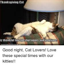 thanksgiving cat iz thankful for sdeshull noms and maltime