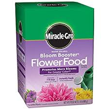flower food packets miracle gro watering can singles includes 24 pre
