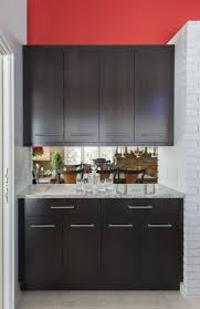Ksi Kitchen Cabinets by Zebrawood Kitchen Cabients Contemporary Kitchen Remodel Ideas