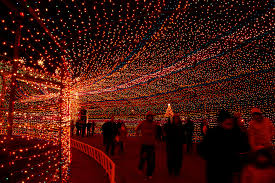 Stoneham Zoo Lights by Photos Of Christmas Lights In America From Nyc To Los Angeles