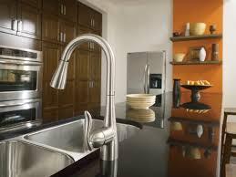 100 pictures of moen kitchen faucets moen 1225 kitchen