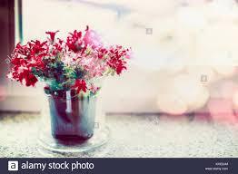 K He In Pink Flowers In Vase On Window Sill Stock Photos U0026 Flowers In Vase On