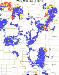 Map Of Northern Wisconsin by Wisconsin White Mold Risk Map U2013 June 30 2016 U2013 Wisconsin Field