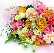 Colorful Roses Colorful Roses Desicomments Com