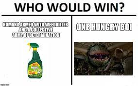Feed Me Seymour Meme - feed me upvotes seymour imgflip