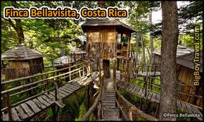 Treehouse Europe - best treehouse hotels in the world top 10