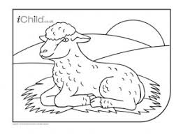 spring lamb colouring picture ichild