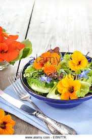 Salad With Edible Flowers - edible flowers stock photos u0026 edible flowers stock images alamy