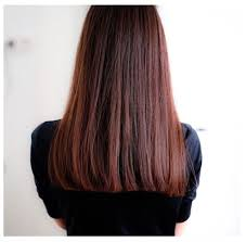 light mahogany brown hair color with what hairstyle best 25 dark mahogany brown ideas on pinterest mahogany brown
