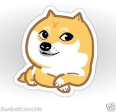 Doge Meme - shibe much doge meme sticker decal car laptop scrapbook dog ebay