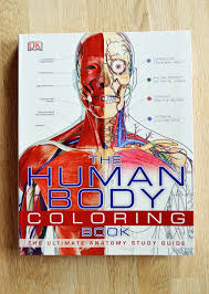 Anatomy And Physiology Coloring Workbook Chapter 6 The Human Body Coloring Book Life Without Books