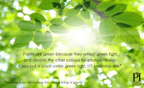 20 illuminating enlightening day brightening facts about light