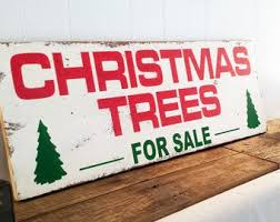 best 25 trees for sale ideas on