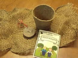 wedding seed packets diy wedding favors seed packets raleigh weddings