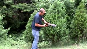 caring for a tree by trimming it is a leland cypress how to trim