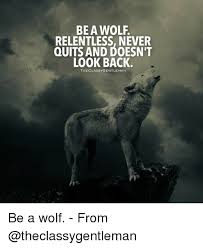 Wolf Memes - be a wolf relentless never quits and doesn t look back