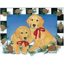 golden retriever dog breeds shop by pet