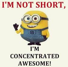 i m not i m concentrated awesome minions i m not i m concentrated awesome 467 462