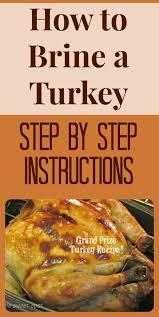 best 25 basting turkey tips ideas on best roasted