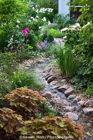 Small Backyard Water Feature Ideas Best 25 Water Gardens Ideas On Pinterest Water Garden Plants