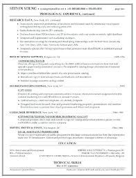 copy and paste resume templates copy paste resume templates design and template basic how