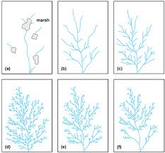 definition pattern of drainage dendritic drainage pattern definition free patterns