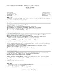 traditional resume template resume free traditional resume templates 2 template co word format